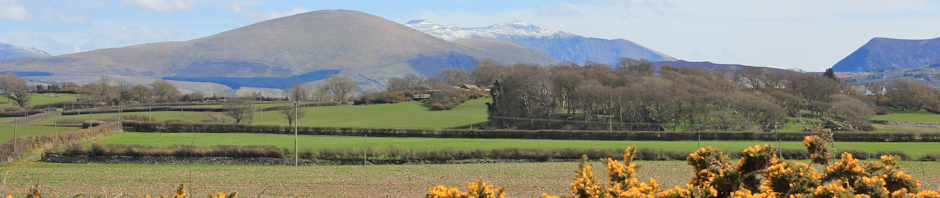 Snowdon near Caernarfon, Ruth Livingstone