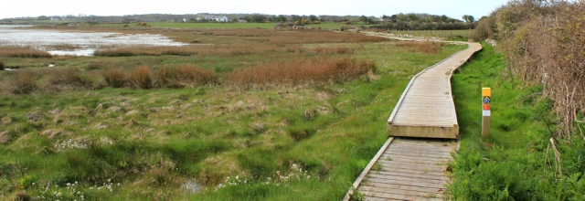 03 boardwalk across the marshes, Ruth walking to Rhyd-y-Bont