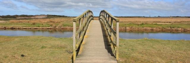 03 footbridge, Ruth Livingstone