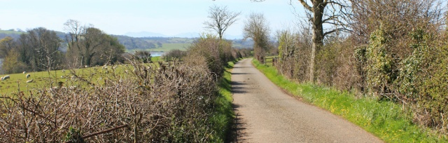 11 inland again, Isle of Anglesey Coastal Path, Ruth