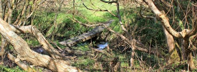 11 rickety bridge, Ruth trekking in Anglesey