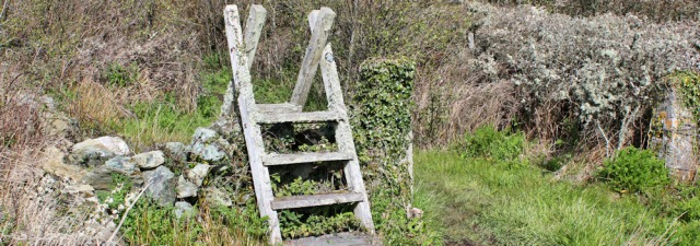 13 moss covered stile, Ruth's coastal walk, Anglesey, Wales