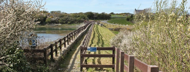 19 Tyddyn-y-cob bridge, Ruth walking to Valley, Anglesey
