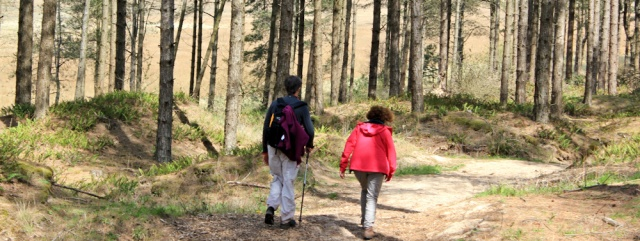 21 hiking through Newborough Forest, Ruth Livingstone with friends