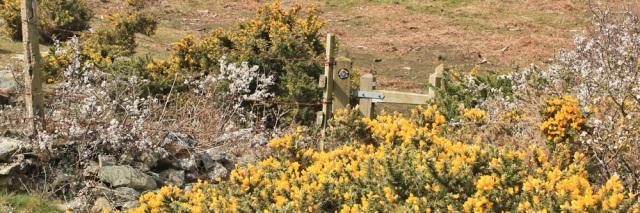 22 hidden gates, Ruth Livingstone long-distance walker
