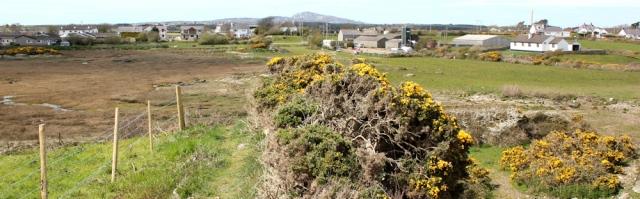 23 Four Mile Bridge, Ruth's coastal walk, Anglesey