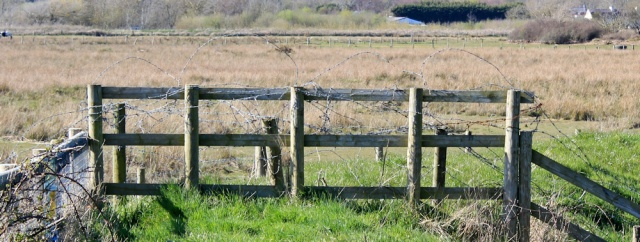 25 obstructed footpath, Anglesey, Ruth's coastal walk, Dwyran