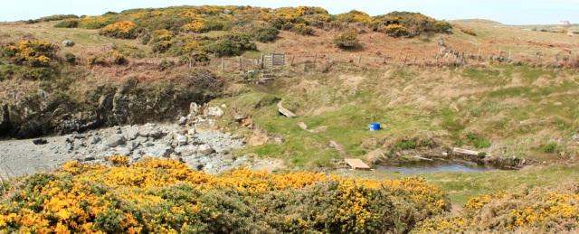 a06 Porth Gorslwyn, Ruth's coastal walk, Anglesey