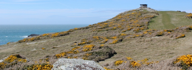 a15 climbing up to lookout station, Rhoscolyn, Anglesey, Ruth's coastal walk