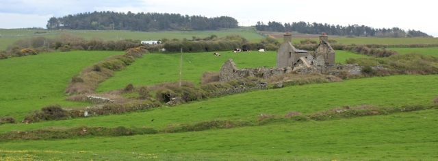 03 farmland and abandoned buildings, Ruth on the west coast of Anglesey