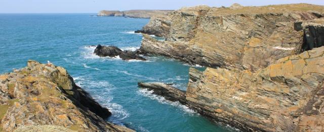 05 Porth Dafarch, coastal walking, Holy Island