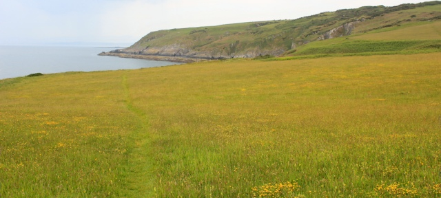 06 walking through meadows, Isle of Anglesey coast path, Ruth Livingstone