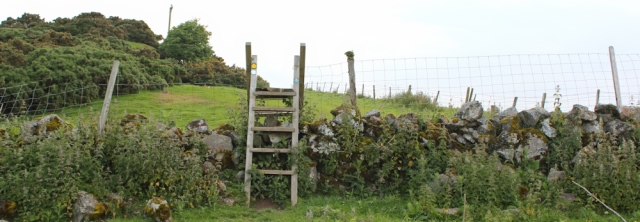 14 big stile, Ruth's coastal walk, Anglesey