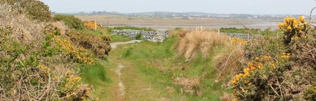 a10 deviation Penrhyn Bach, Ruth's coastal walk
