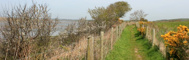 a12 Anglesey coast path, Ruth hiking up estuary to Llanfachraeth