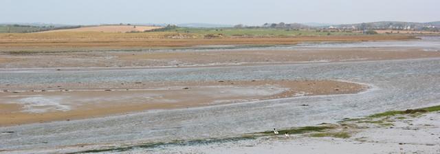 a13 estuary walking, Ruth hiking the Isle of Anglesey Coastal Path