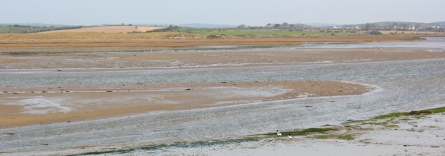 a13 estuary walking, Ruth hiking the Isle of Anglesey Coastal Path