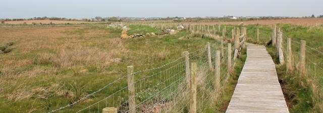 a14 boardwalk, Llanfachraeth estuary, Ruth's coastal walk