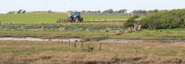 a15 blue tractor, Ruth Livingstone hike