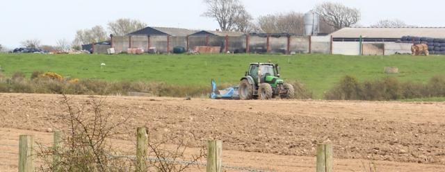 a17 green tractor, Ruth Livingstone coastal walking