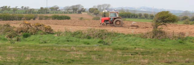 a18 red tractor, Ruth's coastal walk, Anglesey