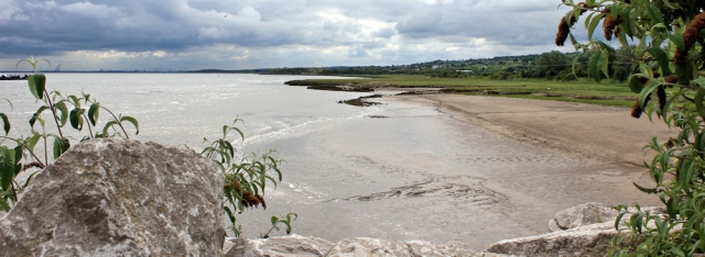 03 overlooking Dee Estuary Nature Reserve, Ruth Livingstone