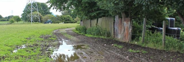 05 Old Hall Farm, Queensferry, Ruth's coastal walk