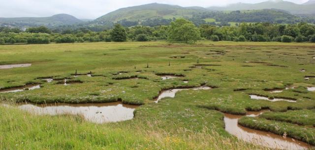 06 Glan y Mor Elias, Ruth's coastal walk, Wales