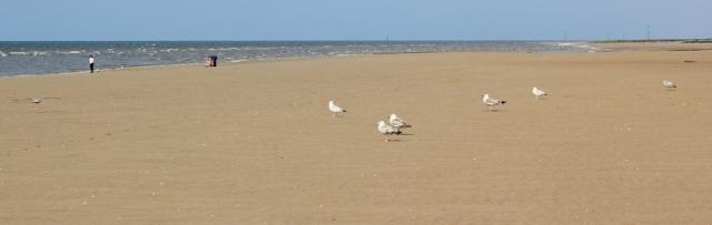 23 empty sands, Ruth walking towards Prestatyn
