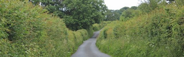 a05 country road to Llandgai, Ruth's coastal walk, North Wales