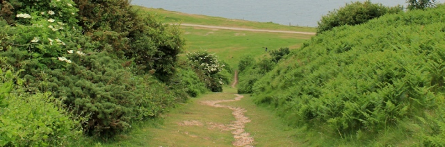 a07 steep path, Little Orme, Ruth's coastal walk, North Wales