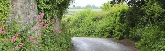 a09 lane walking, Ruth trekking North Wales