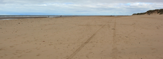 04 Formby sands, Ruth's coastal walk, Sefton