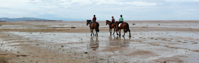 06 horse riders, Ruth walking around The Wirral