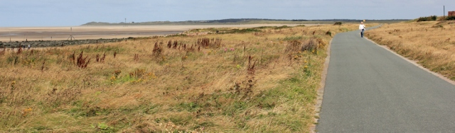 13 Sefton coast path and cycle way, walking to Formby