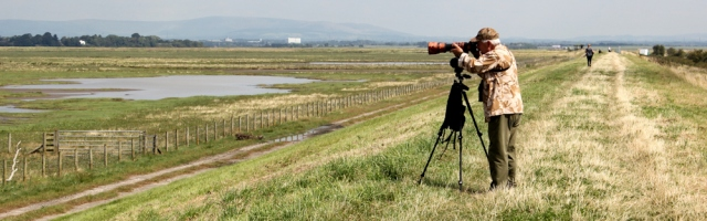 16 birdwatchers, Hesketh Out Marsh, Ruth's coastal walk, Ribble Estuary NNR