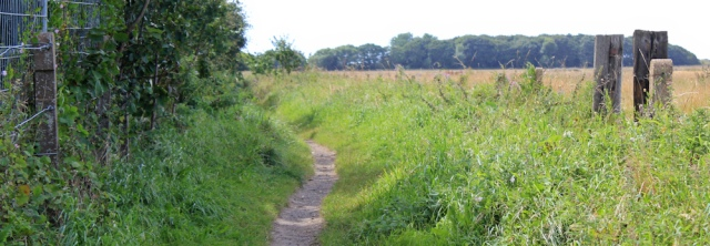 23 Sefton Coastal Footpath to Cabin Hill Nature Reserve, Ruth Livingstone