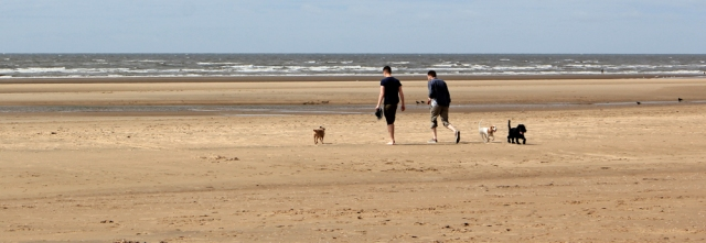 29 Dog walkers, Formby Beach, Ruth's coastal walk