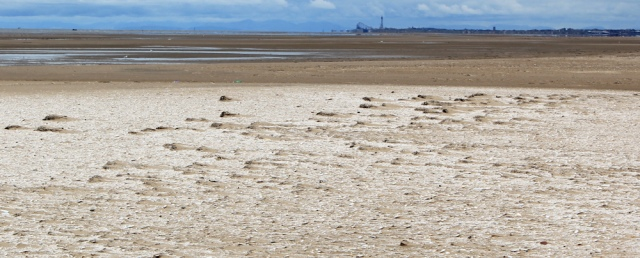bleached sands, Ruth's coastal walk, Southport
