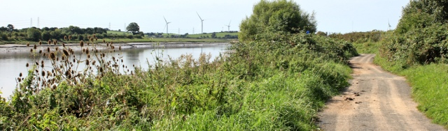 10-cycle-path-river-lune-ruth-walking-to-oxcliffe-lancaster