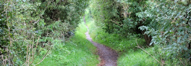 11-footpath-sunderland-point-ruths-coastal-hike-lancashire