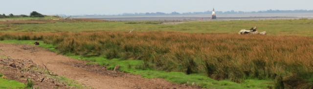 12-plover-scar-lighthouse-ruths-coastal-walk-sunderland-point-lancashire