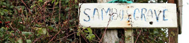 13-sambos-grave-sunderland-point-ruths-coastal-walk