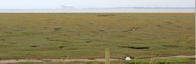 14-view-across-marshes-ruth-liviingstone-walking-the-english-coast