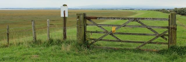 15-marsh-wall-ruth-walking-the-english-coast