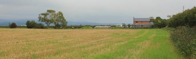 20-ruth-walking-the-english-coast-along-a-field