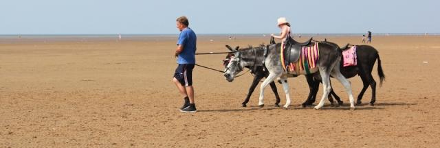 24-donkey-rides-lytham-st-annes