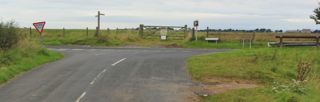26-marsh-lane-ruth-walking-the-english-coast