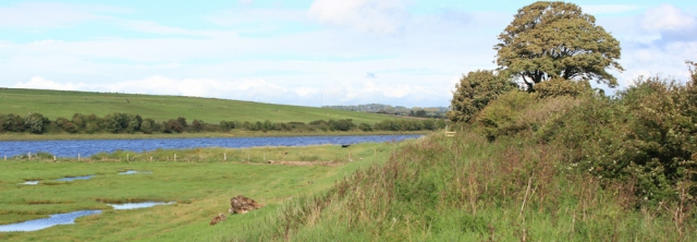 31-bank-of-the-river-lune-ruth-walking-to-lancaster