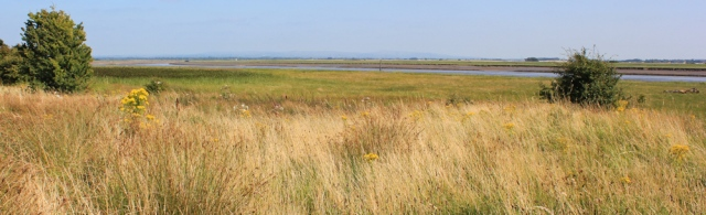 35 marshes, Ribble Estuary, Ruth Livingstone